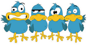 Bird's Band