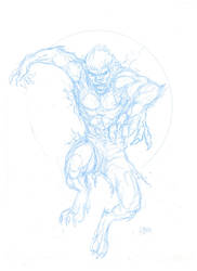 Wolfman - Sketch Layout