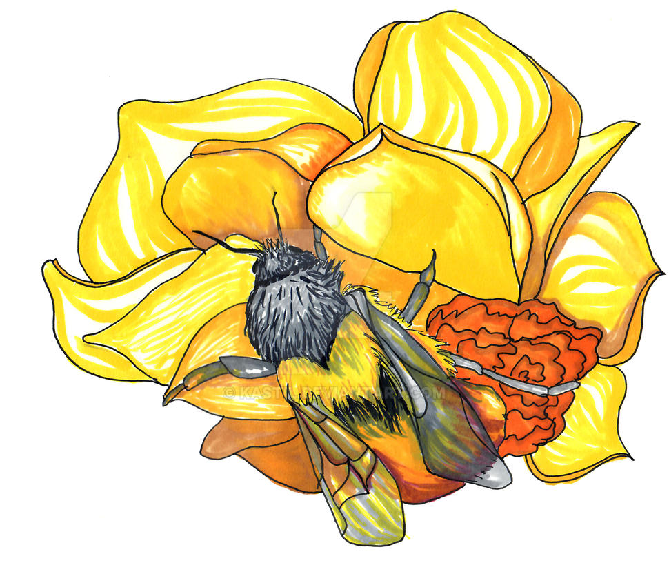 Bee  by Kastil