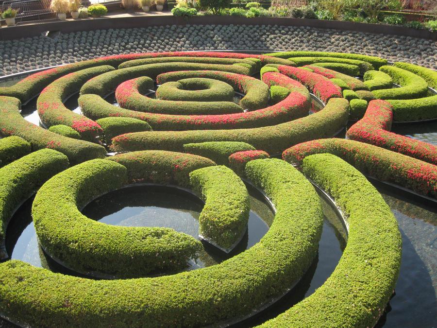 A-maze-ing shrubbery by Scarrett