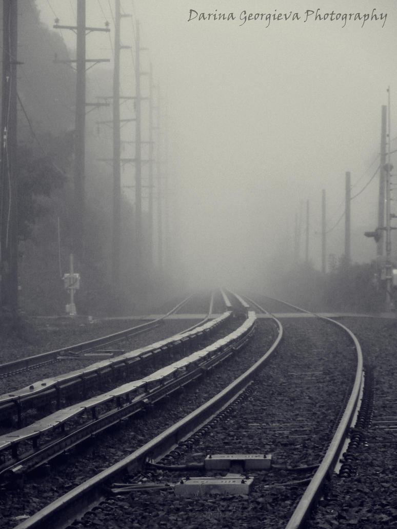Railroad tracks in the fog by darina96