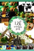 1.2K WATCHERS PACK by Alkindii