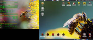 July 2016 Desktop - Arch Linux and Xfce