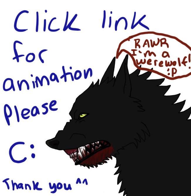 Werewolf Anime Transformation Werewolf Animation by Felondog