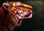 Tiger by FelonDog