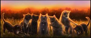 Fluffballs in Sunset by FelonDog