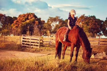 enough with saddles IV by LyraWhite