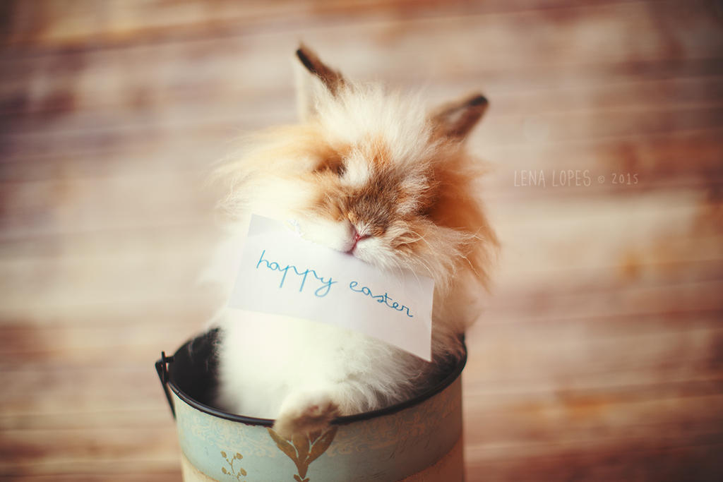 Mocha's Easter by LyraWhite