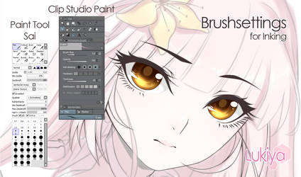 Brushsettings CSP x PTS