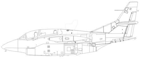 T-2C Blank
