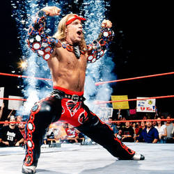 Shawn Michaels by WWE-WOMENS02