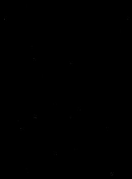 Zodiac Taurus Meg Lines