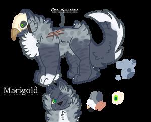 [Marigold 502] Adult