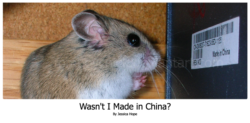 Wasn't I Made in China by Tomboychick