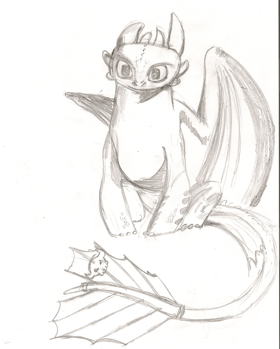 1000+ ideas about Toothless Sketch on Pinterest