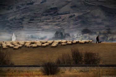 The Lonley Shepherd by ioanabranisteanu