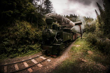 Mocanita - Runaway Train by ioanabranisteanu