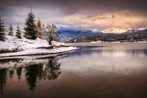 Winter Magic - First Snow in Colibita by ioanabranisteanu