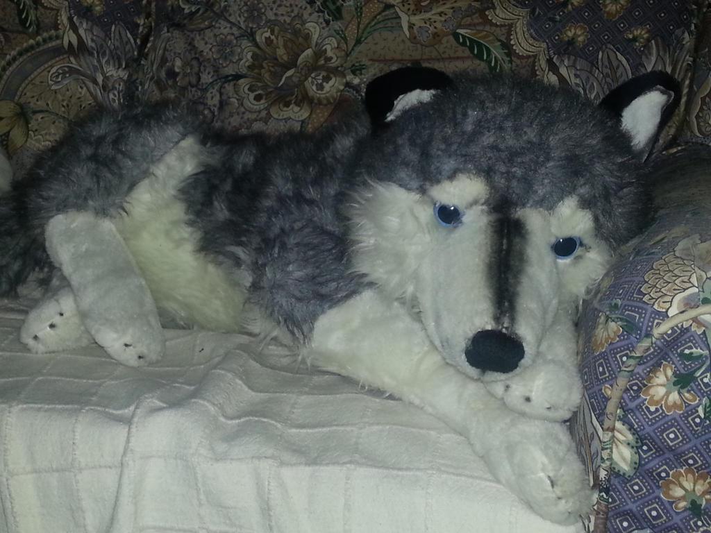 elky the husky plush