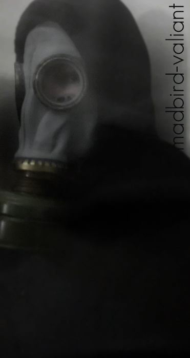 Madbird-Valiant's Profile Picture