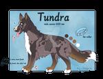 Tundra Ref
