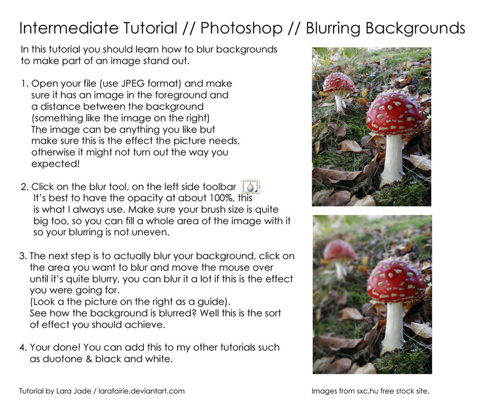 Tutorial - Blurring Background by larafairie-stock