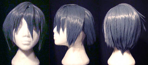 Tatsuma Wig