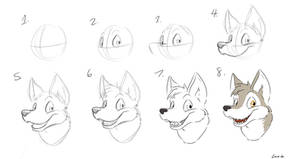 Basic Canine Head Tutorial