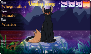 Wheatstalker - Warrior - ShadowClan