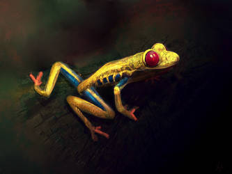 Tree Frog by RedSaucers
