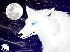 -Whitefang- by Whitefang45