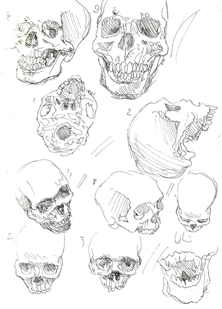 skulls p2 by JellyJulia