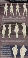 Female Body Types Tutorial