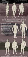 Male Body Types Tutorial