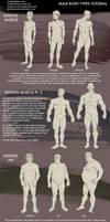 Male Body Types Tutorial