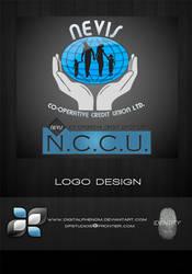 Nevis Credit Union by DigitalPhenom