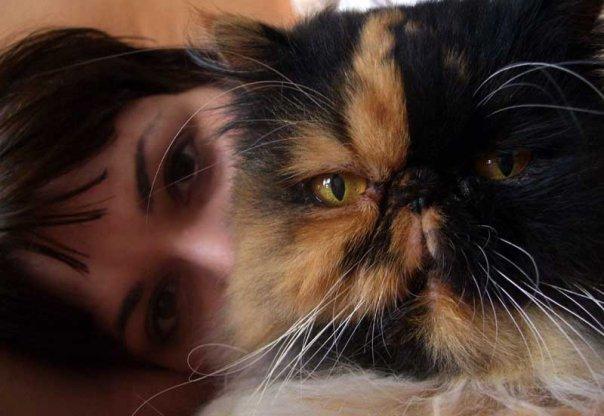 falketta's Profile Picture