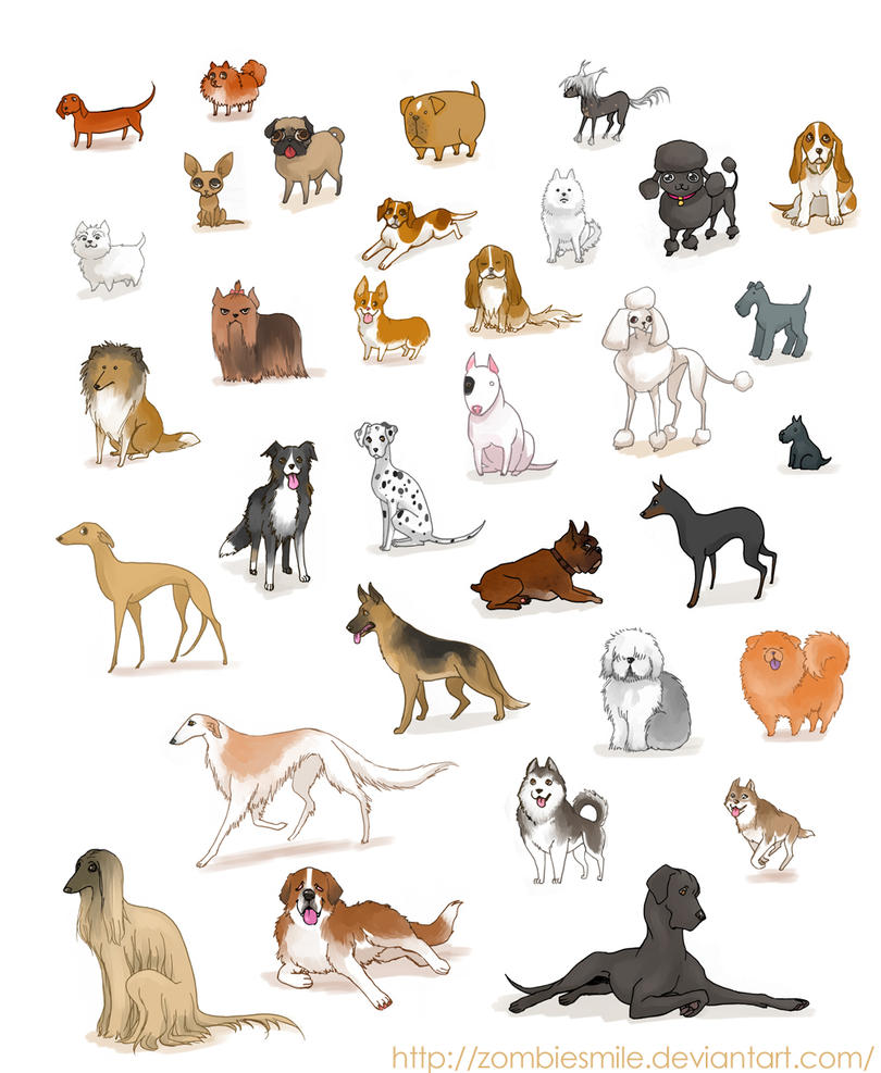 A ton of dogs by zombiesmile on deviantart for Types of dogs with photos