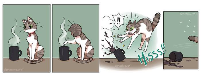 Curiosity killed the coffee