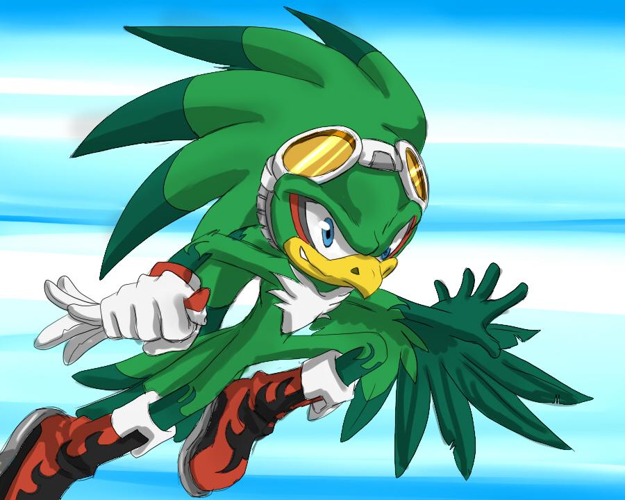 Pin Hedgehog Jet Hawk Free Riders Sonic Sega Wii Xbox on ...
