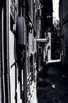 Black and white style in Old City (darkness) by naraphoto