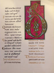 Reproduction of medieval manuscript - Latin - D