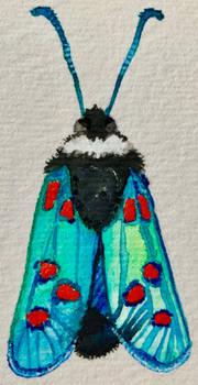 Watercolour blue moth