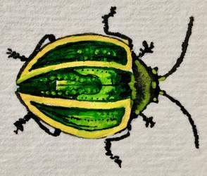Watercolour green bug