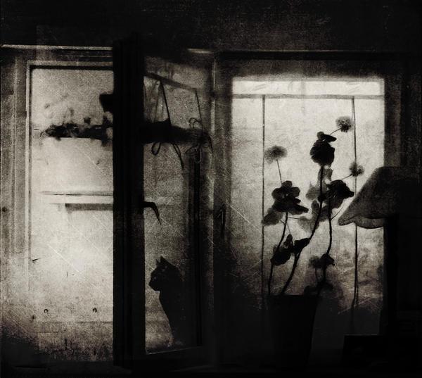 Waiting - I by CeddeX