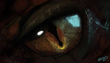Smaug's Eye by Borsio