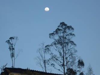 the moon in the afternoon by YamilyAlbrecht