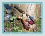 Confrontation - Druide