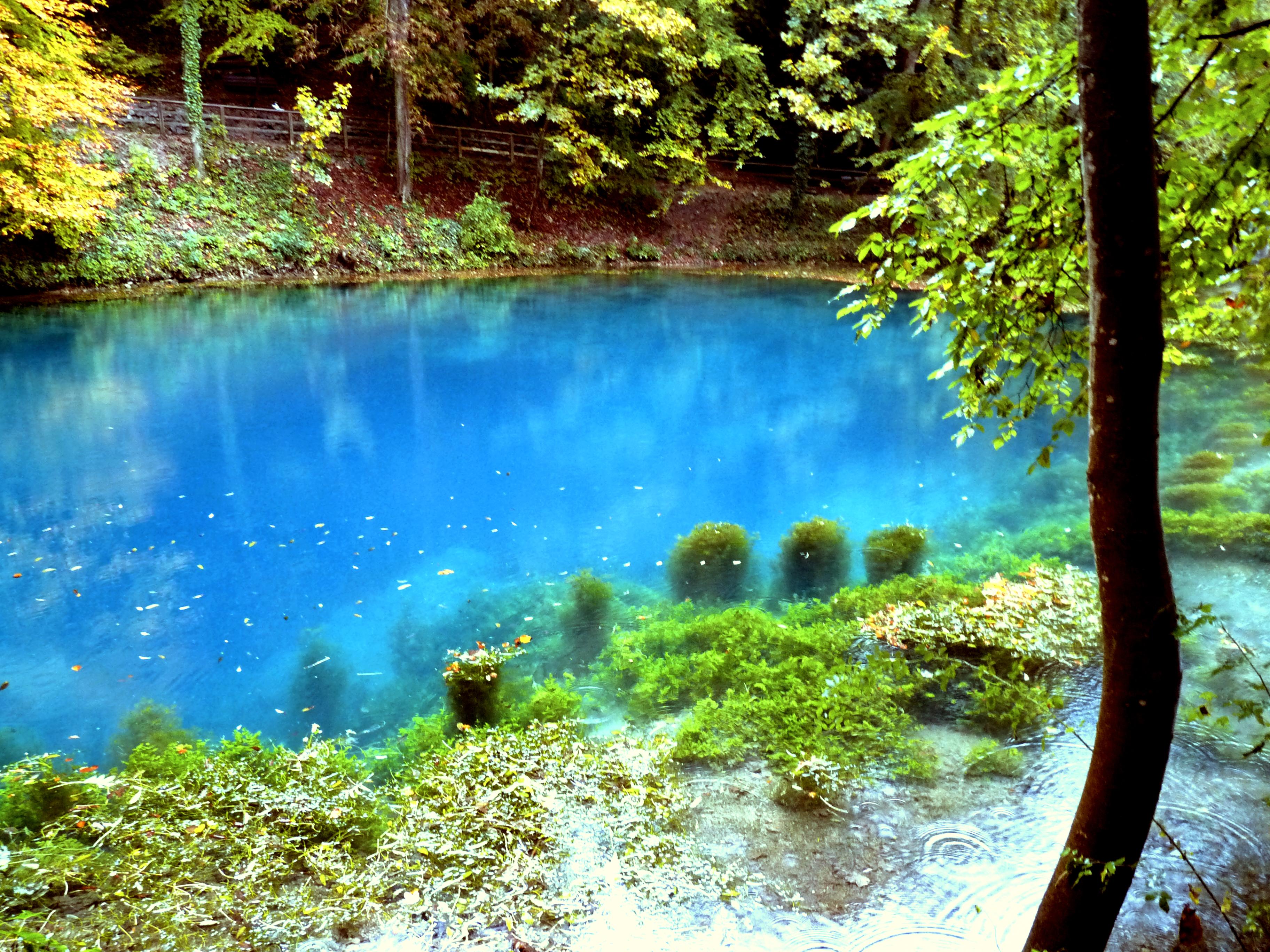 Natural Images Lake Jackson Tx