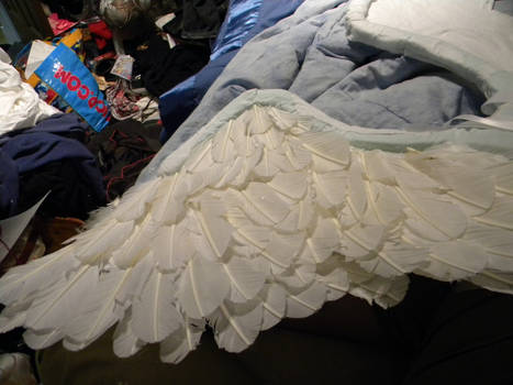 Swan Wings WIP 2